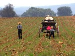 Amish boys using traditional farming techniques. Photograph by National Geographic Channels / Jeff Hoagland.