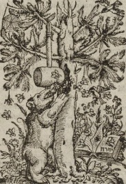 1569 Bear Bible